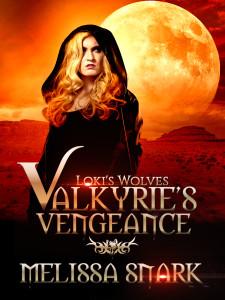 Valkyrie's Vengeance Urban Fantasy Melissa Snark